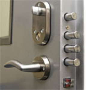Security hinged door