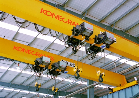 Workshop Cranes