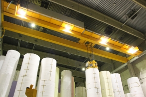Vacuum Lifter paper industry